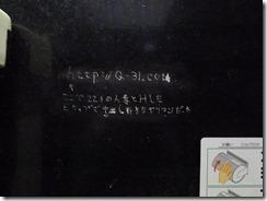 L1010161